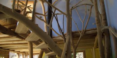 Оформление интерьеров с помощью цельного дерева
